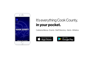 Cook County ISD 166 New App
